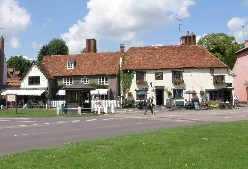 Finchingfield-fox.jpg